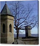 Tree On The Castle Wall Canvas Print