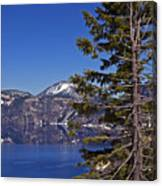 Tree Over Crater Lake Canvas Print