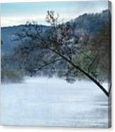 Tree Over Gasconade River Canvas Print