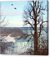 Tree Overlooking The Falls Canvas Print