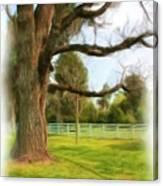 Tree Series 1323 Canvas Print