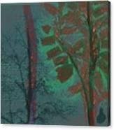 Tree Shadows At Midnight Canvas Print