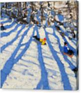 Tree Shadows Morzine Canvas Print