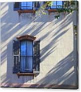 Tree Shadows On Savannah House Canvas Print