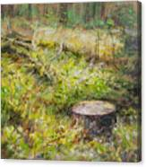 Tree Stump In Vikersund Canvas Print