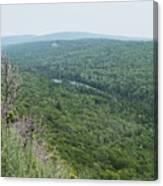 Tree Top Valley Canvas Print