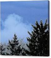 Tree Tops 1 Canvas Print