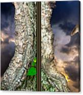 Tree Trunk Portal - 3d Stereo X-view Canvas Print