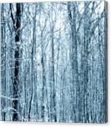 Tree Trunks Pattern Canvas Print