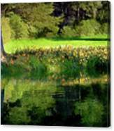 Tree With Lily Reflections Canvas Print