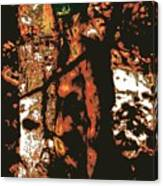 Tree Woman / 2 Canvas Print
