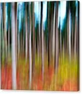 Treecolour Canvas Print