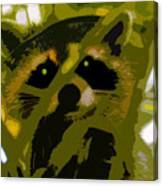 Treed Raccoon Canvas Print