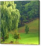 Trees Along Hill Canvas Print