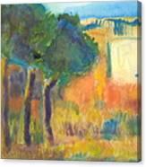 Trees Along The Rio Grande Canvas Print