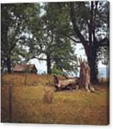 Trees And Cabin Canvas Print