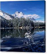 Trees At The Lakeside, Yellowstone Canvas Print