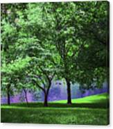 Trees By A Pond Canvas Print