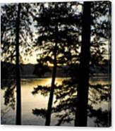 Trees By The Lake Canvas Print