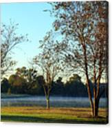 Trees By The Water Canvas Print