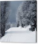 Trees Hills And Snow Canvas Print