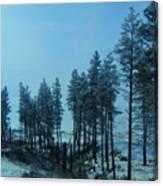 Trees In Northwest Canvas Print