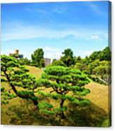 Trees In The City Canvas Print