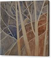 Trees In The Dead Of Winter Canvas Print