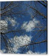 Trees In The Spring With Clouds Canvas Print