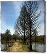 Trees In Water Garden Canvas Print