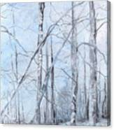 Trees In Winter Snow Canvas Print
