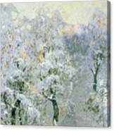 Trees In Wintry Silver Canvas Print