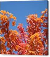 Trees Landscape Art Print Fall Tree Leaves Baslee Troutman Canvas Print