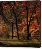 Trees Of Autumn Canvas Print