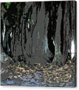 Trees Of The Banyan Canvas Print