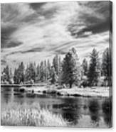 Trees Of The Preserve Canvas Print