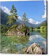 Trees On A Rock, Hintersee Canvas Print