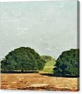 Trees On Field Canvas Print