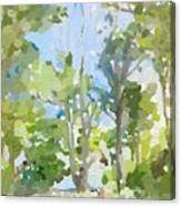 Trees On Ski Island, Banana River, Cape Canaveral, Fl. Canvas Print