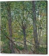Trees Paris, July 1887 Vincent Van Gogh 1853  1890 Canvas Print