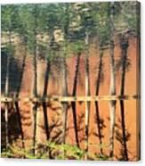 Trees Reflecting Canvas Print