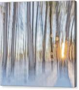 Trees, Snow And Golden Light Abstract Canvas Print
