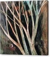 Trees That Tumble Canvas Print