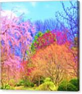 Trees With Color Canvas Print