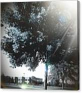 Treeson Canvas Print