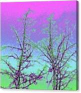 Treetops 5 Canvas Print
