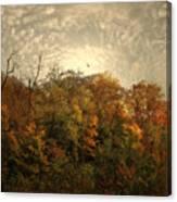 Treetops Canvas Print