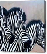 Tres Amigos Canvas Print