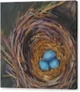 Tres Bleu Canvas Print