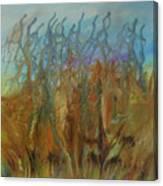 Tresors Des Mers Canvas Print